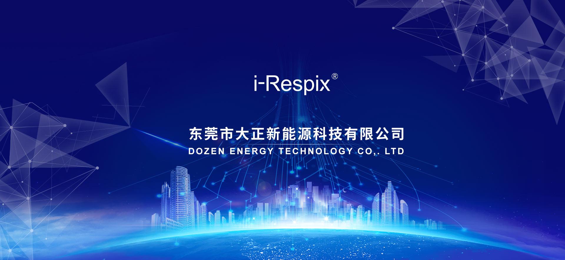 东莞市大正新能源科技有限公司